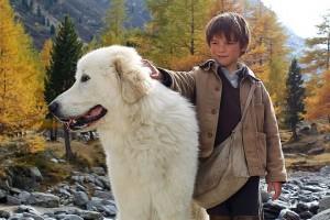 Die berührende Geschichte einer unzertrennlichen Freundschaft zwischen einem wilden Hund und einem kleinen Jungen.